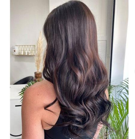 Ebony Hair Color